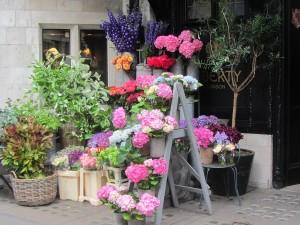 Liberty's Flowers 2